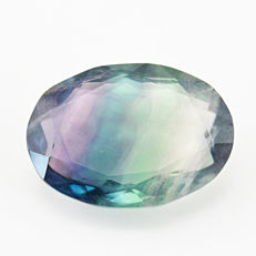 Fine Rare Multicolor Fluorite Faceted Cabochon gemstone - 35x25x13 mm - 85.50 cts