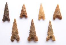 Lot with Neolithic arrowheads 23-43 mm (7)
