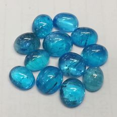 Excellent Lot of beautiful apatite  - 24.31 ct (12)