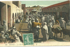 Algeria (outside Algiers) - Beautiful batch of 70 postcards of daily life in Algeria between 1900 and 1930