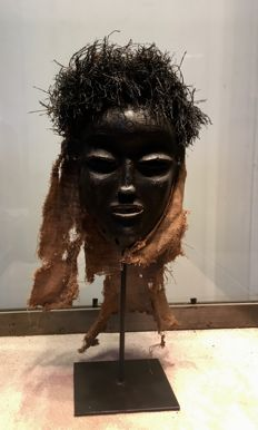 Magnificent ancient dance Mask in wood and in raffia - PENDE - Former Belgian Congo