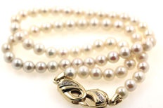 Akoya cultured pearl necklace with 585 yellow gold 6mm diameter clasp 585 yellow gold