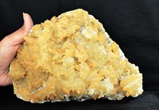 New found of Golden pointed Yellow Calcite on Stilbite matrix - 22 x 14 cm - 3150 gm