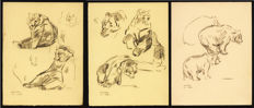 Geldhof, Herbert - 3 Original Drawing - Kamchatka bear - [1970s]