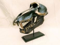 Fine, bronze-finish replica Chacma Baboon skull, with custom stand - Papio ursinus - 23 x 13 x 19cm