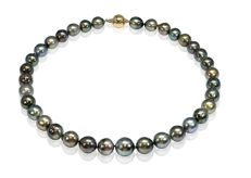 Lustrous Multicolour Tahitian Pearl Necklace Completed with A Yellow Gold Ball Clasp ** No Reserve Price **