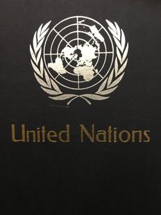 United Nations - Collection in 3 stockbooks and 2 albums