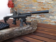 Tactical Kral  PCP air rifle Air Rifle 5,5 (.22)
