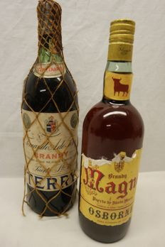 2 Old Bottles of Brandy - 1x Terry Brandy & 1x Magno Brandy.