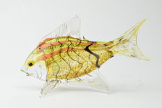 Dario Frare (Frare glassworks) - Tropical Fish