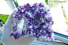 Amethyst Crystal Cluster from Urugay - 18 x 14.5 x 3.5 cm - 783 gm