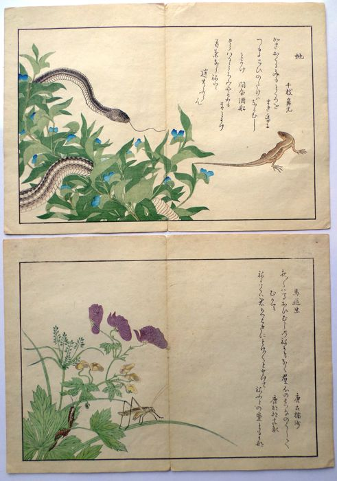 "Woodblock print diptych of Kitagawa Utamaro (1753-1806) (facsimile) - ""Snake and lizard"" and ""Grasshopper and centipede"" from ""Churui gafu"" - Japan - 1892"