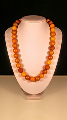 Vintage egg yolk colour modified Baltic Amber necklace, 56 grams
