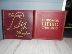 Lot of 100 Liebig series (x 6 chromos = 600 chromos) between Sanguinetti 1280 and 1768 from 1933 to 1961, all different