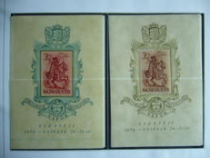 Theme Horses 1890/1992 - Collection on 649 sheets in 2 binders