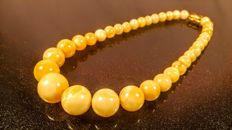 Vintage modified Egg yolk colour Baltic Amber necklace,  36 grams, made in Jantarny city, Russia