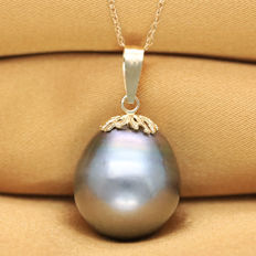 14K Gold Pendant set with 13.6 x 15.6 mm Genuine Tahitian Black Pearl  (No reserve Price)
