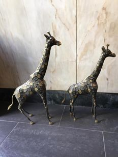 Pair of solid bronze giraffes from the House Virtus of Madrid - 20th century