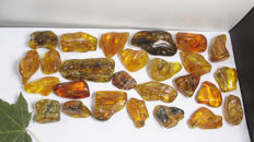Baltic amber with inclusions 207 gr - 30 - 62 mm (27)