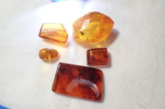 Baltic amber with insects and inclusions, 12-30 mm (5)