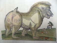 One leaf with a large wood block - Conrad Gesner - Mammals: Baboon, Ape - 1669