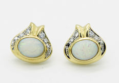 14 kt - yellow gold - ladies' - stud earrings - opal - 6 x brilliant cut diamonds of 0.01 ct.