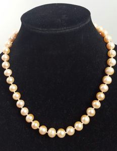 Silver 925 - Necklace Fresh water cultured Pearls, peach colour - Length: 49 cm