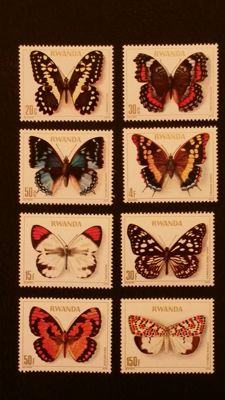 Thematic - Butterflies, insects, flora and scouting collection