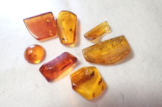Baltic amber with insects and inclusions, 16-25 mm (7)