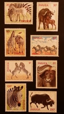 Thematic - Fauna collection, mammals and reptiles