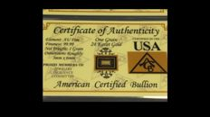 USA-American certified bullion 10x1 Grain 999 Gold -in blister card with certificate