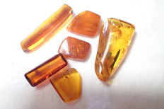 Baltic amber with insects and inclusions 16-37 mm (6) - 9,01 g