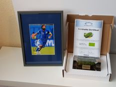 Final WC 2006 Italy - France - original piece of grass in acrylic + hand signed framed photo in passepartout Andrea Pirlo Italy 2006 + COA