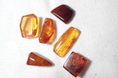 Baltic amber with insects and inclusions 20-25 mm (6)