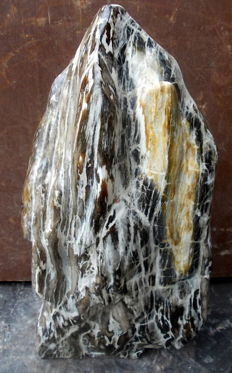 Trunk of petrified wood - 51 cm - 14.4 kg