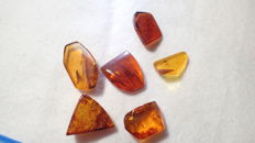 Baltic amber with insects and inclusions, 15-22 mm (6)