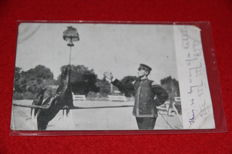 Lot 90 New Zealand  all 9x14 interesting very nice postcards and Rppc all photographed