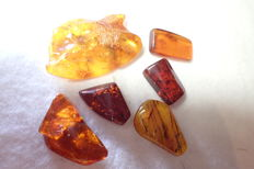 Baltic amber with insects and inclusions 22-34 mm (6)