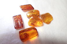 Baltic amber with insects and inclusions 19-22 mm (6)