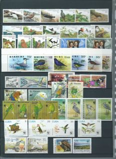 Birds - Collection of stamps and blocks