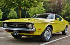 Ford USA - Mustang Sportsroof 302 - 1971