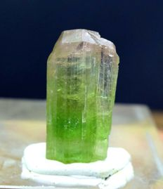 Terminated And Undamaged  Bi-Color Tourmaline Crystal  : 2.3*1.1*0.7 cm: 25.66 Cts