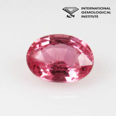 Pink Sapphire - 0.66 Ct - No reserve