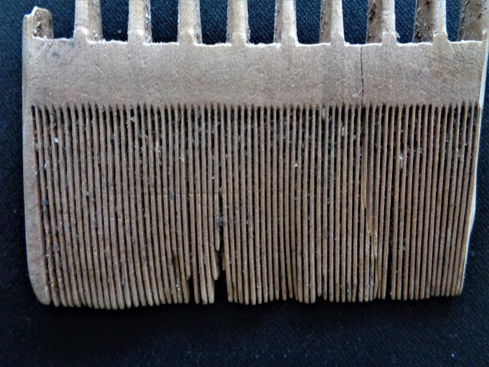 Post-medieval comb made of wood - 85 mm