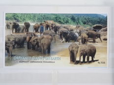 Sri Lanka and Bangladesh 2002/2009 - selection of stamps and blocks