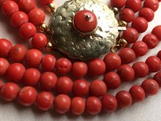 Magnificent, Old, Antique, 100% Genuine Mediterranean Sea Precious Coral Necklace, Round, Beautiful Antique Gold Clasp from Friesland with One Precious Coral