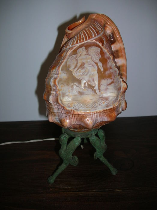 Cameo shell lamp