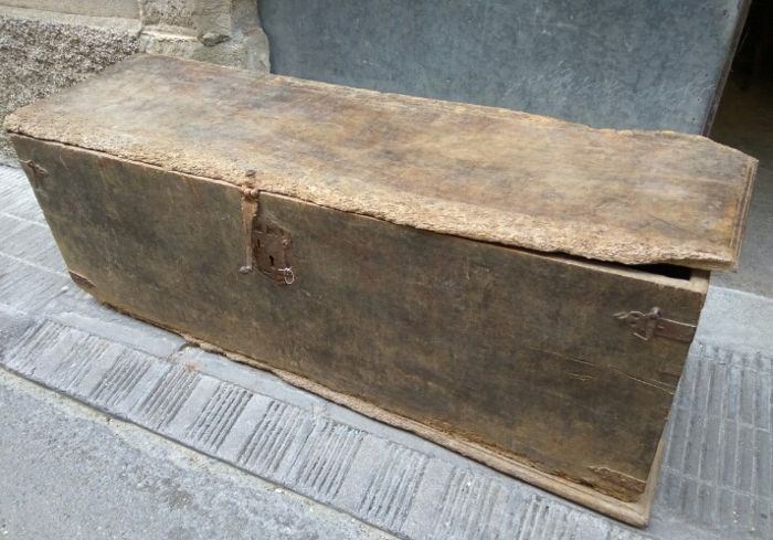 Trunk - Chest - Walnut - Spain - fine 17th century