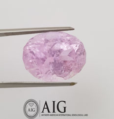 Kunzite - 17.24 ct   -*NO Reserve Price*-