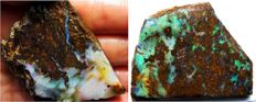 Lot Beautiful Australian Boulder Opals Rough – 341.15 cts Total (2)